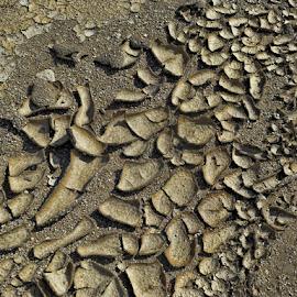 Dried Mud by Deborah Russenberger - Abstract Patterns (  )