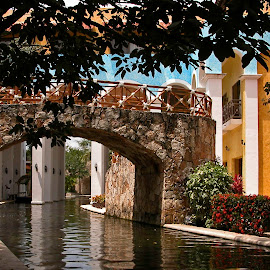 Riverwalk Bridge by Debbie Salvesen - Buildings & Architecture Architectural Detail ( water, peaceful, tree, nature, arch, bushes, color, mexico, riviera maya, outside, waterway,  )