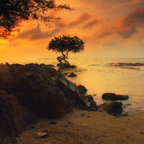 good morning by Roem Hasadi - Landscapes Sunsets & Sunrises ( indonesia, sunset, sunrise, landscapes, batam )
