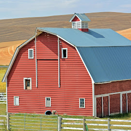 Red Barn by Kurt Bailey - Buildings & Architecture Other Exteriors (  )