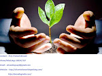 eBranding India is the Best Seed funding consultation services in Jodhpur