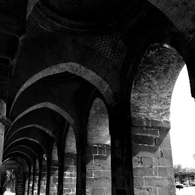 Adina Mosque or Jami Masjid ( 1364-1374 AD ) by Saptarshi Mandal - Buildings & Architecture Public & Historical ( black and white, historical, architecture )