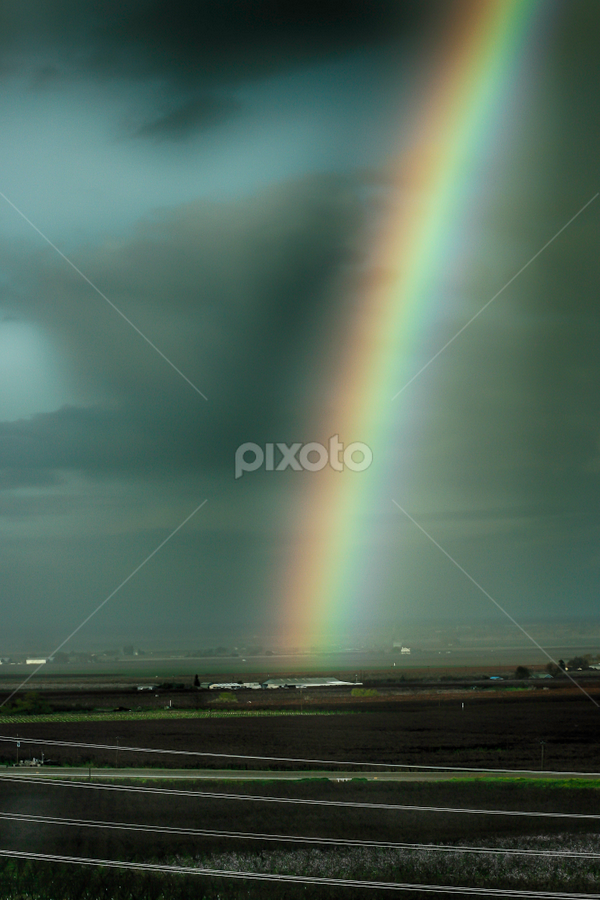 Rainbow Over the Farm by Nancy Merolle - Landscapes Prairies, Meadows & Fields ( farm, fruit, wires, grass, california, orchard, rainbow, rain )