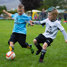 Race for the Ball by Garry Dosa - Sports & Fitness Soccer/Association football ( tournament, ball, blue, boys, movement, sports, action, children, grey, game, people, soccer )