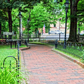 The Path by Gregg Rich - City,  Street & Park  Vistas ( flag, green, path, trees )