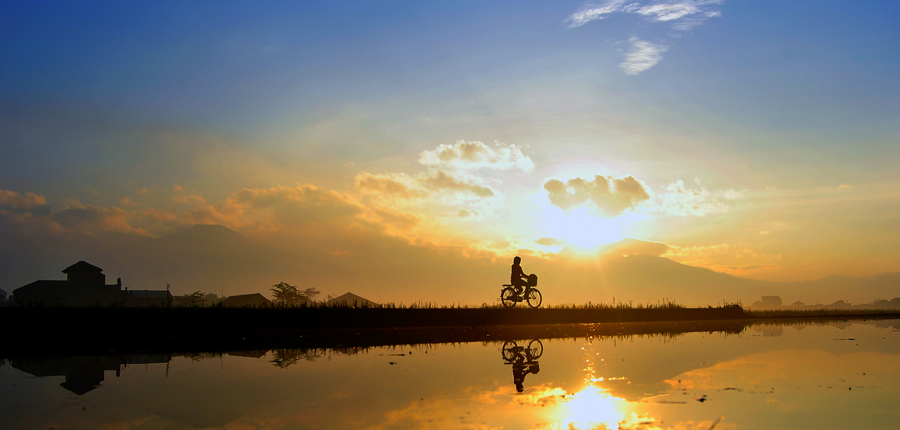 Down The Paddy Field by Deden Mulyadi - Transportation Bicycles