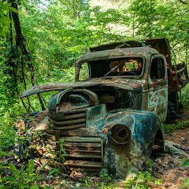 Seen Better Days by Chris Cavallo - Transportation Automobiles ( maine, blue, truck, dump truck, rusty, aqua, rust, woods, abandoned )