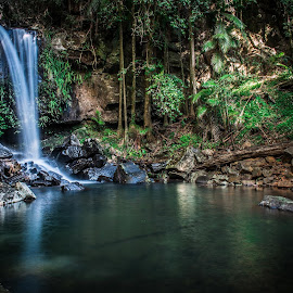 Waterfall by Carmen Gunther - Landscapes Waterscapes
