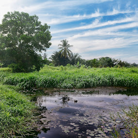 Denai by Syafizul  Abdullah - Landscapes Prairies, Meadows & Fields