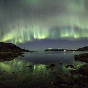 green thing by Benny Høynes - Landscapes Waterscapes ( waterscape, green, northern lights, aurora borealis, norway )