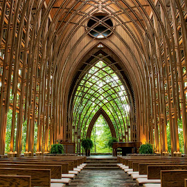 THE CHAPEL by Dana Johnson - Buildings & Architecture Places of Worship ( cooper chapel, church, arhcitecture, chapel, worship, building )