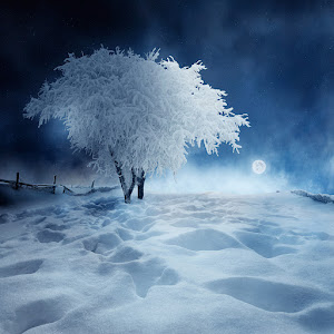 winter-alone_night_time.jpg