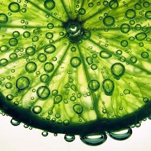 Lime1.jpg