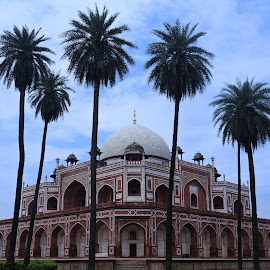 Delhi's most Iconic monument! by Jay Vardhan Sharan - Buildings & Architecture Statues & Monuments ( tomb, building, vintage, beautiful, palm trees, sandstone, architecture, heritage, historic, delhi, huge, blue sky, monument, historical )