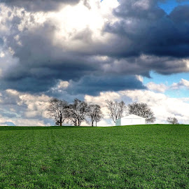 trees and clouds by Fraya Replinger - Landscapes Prairies, Meadows & Fields ( farm, clouds, hill, trees, skt, country )