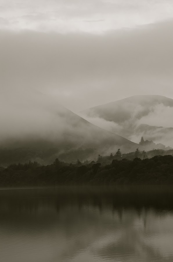 Fog in the Hills by Seamus Crowley - Landscapes Waterscapes