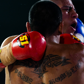 Boxgasm by Xióng Xióng - Sports & Fitness Boxing ( brave, punch, vampire, neck, box )