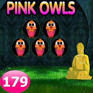 Five Pink Owl Escape Game