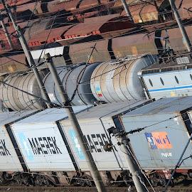 by Liviu Nanu - Transportation Trains ( trains )