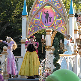 Disney Princesses with Mickey and Minnie by Debbie Salvesen - People Musicians & Entertainers ( sleeping beauty, mickey mouse, disney princesses, california, minnie mouse, fun, disney, cinderella, magic, vacation, magical, family, disneyland, snow white,  )