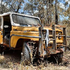 Jeep by Angelica Glen - Transportation Automobiles ( dry, jeep, wreck, bush,  )