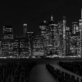 New York Manhattan Skyline by Abhishek Parashar - Black & White Buildings & Architecture ( manhattan, nyc, manhattan skyline, black and white, new york, new york skyline )