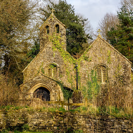 Ancient Church by Mal Spain - Buildings & Architecture Decaying & Abandoned ( sky, window, church, trees, bell tower, derelict, grave, wall, graveyard )