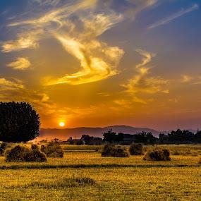 Land of Gold by Umair Khan - Landscapes Sunsets & Sunrises (  )