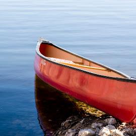 Red Canoe by Rhonda Royse - Transportation Boats ( winter, snow, pine, january 2015 )