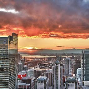 Toronto Sunset by Guy Longtin - City,  Street & Park  Skylines ( clouds, toronto, sunset, buildings, ontario, city, , #GARYFONGDRAMATICLIGHT, #WTFBOBDAVIS )