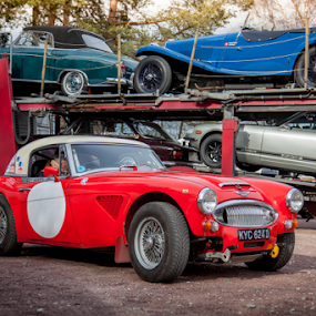 Unload the Classic by John Walton - Transportation Automobiles ( #austin healey, #transporter, #heritagefocus, classic car, #3000, #malt tour, #hero, #red )