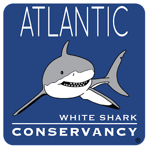 Sharktivity - White Shark App For PC (Windows & MAC)