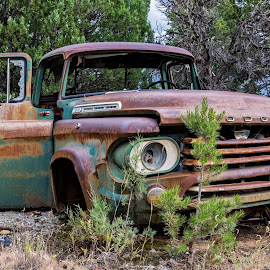 Power Wagon by Kirk Kimble - Transportation Automobiles ( forest, dodge, rust, woods, power wagon )
