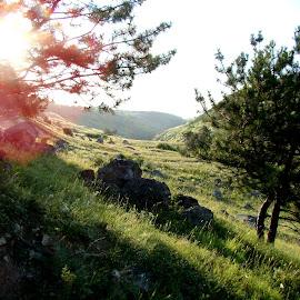 Joy by Alets Ra - Landscapes Mountains & Hills