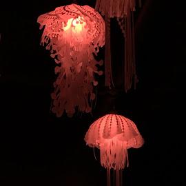 Red Jellies by Geri Williams - Animals Sea Creatures
