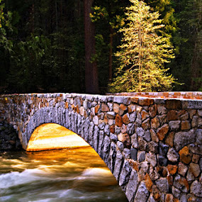 Crossing the Merced River by Clyde Smith - Landscapes Travel ( tree, stone bridge, river, bridge )