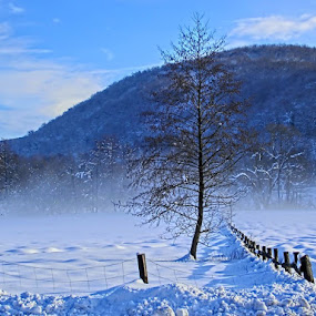 by Milan Vujasić - Landscapes Weather ( snowfall, mountain, wood, frost, travel, cover, sky, nature, cold, tree, snow, weather, year, sunshine, light, fairytale, xmas, white, forest, country, december, winter, vacation, environment, season, view, day, natural, colorful, beauty, landscape, frozen, sun, ice, park, flora, beautiful, christmas, scenic, morning, field, new, color, blue, sunset, background, outdoor, cloud, sunrise, scenery )