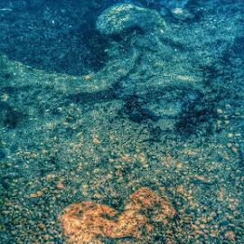 by Jennifer De Guglielmo Hayes - Nature Up Close Rock & Stone
