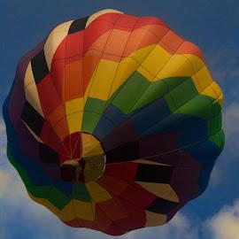 Summer Ballooning by Tarea J Roach-Pritchett - Transportation Other ( hot air balloon, sky, summer, aerial, balloon,  )