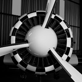 Golden Flight by Zareef Knight - Transportation Airplanes