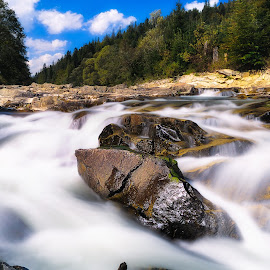 Sunny Day by Vladimir Div  - Landscapes Forests ( water, waterfall, creek, forest, landscape )