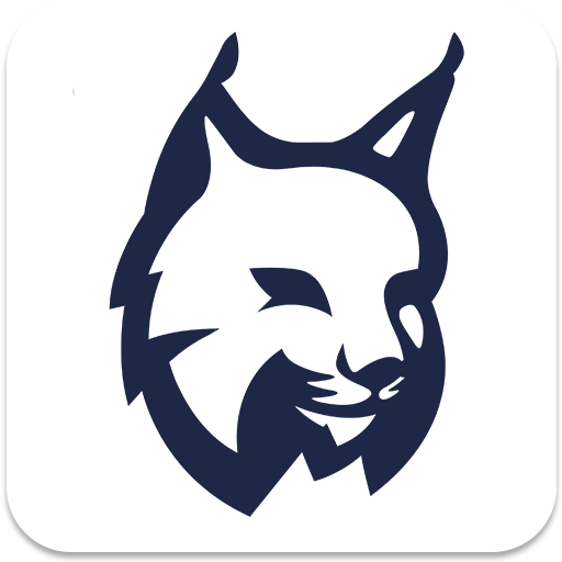 Lynx Privacy-Hide photo/video