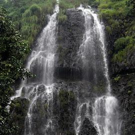 Falls by Vivek Naik - Landscapes Travel (  )