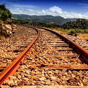Green train (1 di 1).jpg