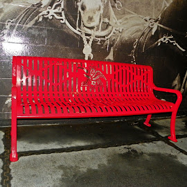 Red Bench by Sandy Stevens Krassinger - Artistic Objects Furniture ( red, bench, metal, artistic object, furniture,  )