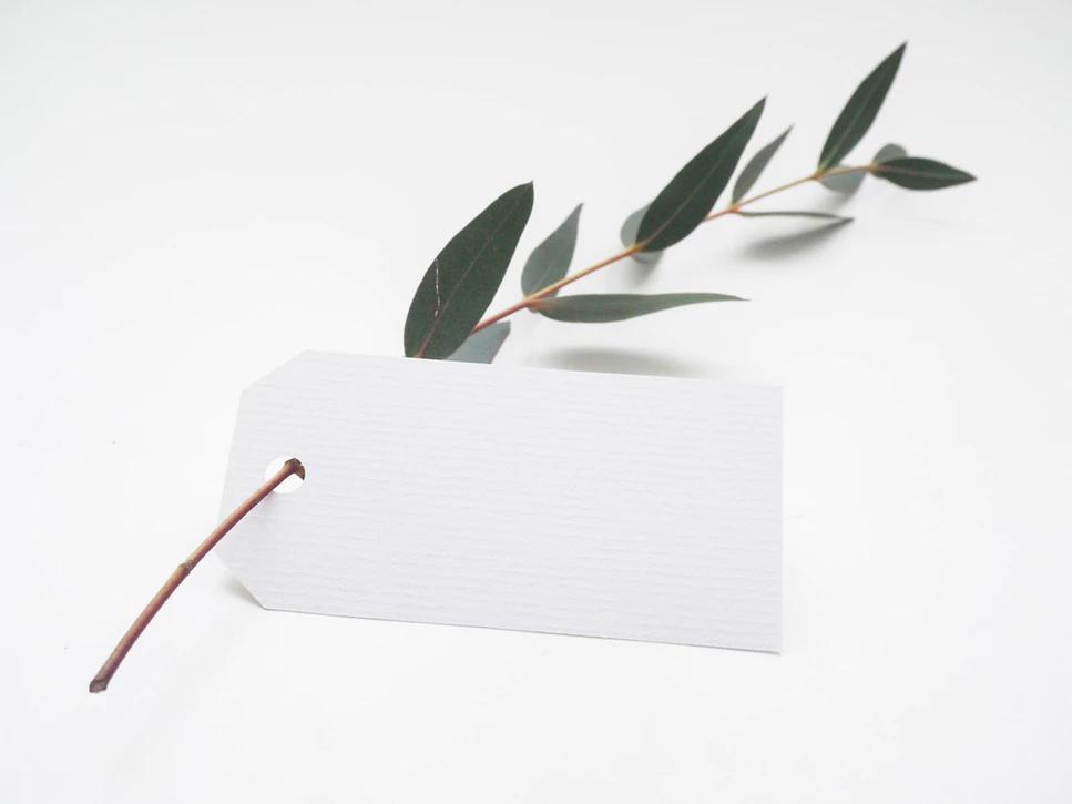 Selos de sustentabilidade: tendência que impacta seu negócio