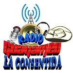 Radio Guayameo La Consentida Icon
