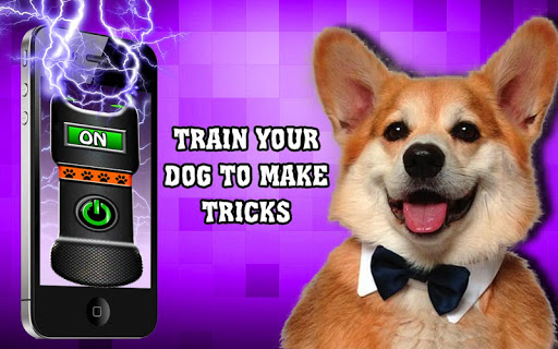 Dog simulator: stunner - screenshot