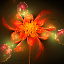 Flower and Bubbles by Cassy 67 - Illustration Abstract & Patterns ( orange, bubble, digital art, bubbles, flowers, fractal, digital, fractals, flower )