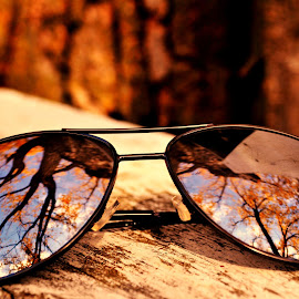 Fall's Reflections by Nellie Johnson - Artistic Objects Clothing & Accessories ( weater, minnesota, fallweather, sky, aviators, beautiful, fall, trees, leaves, sunglasses )